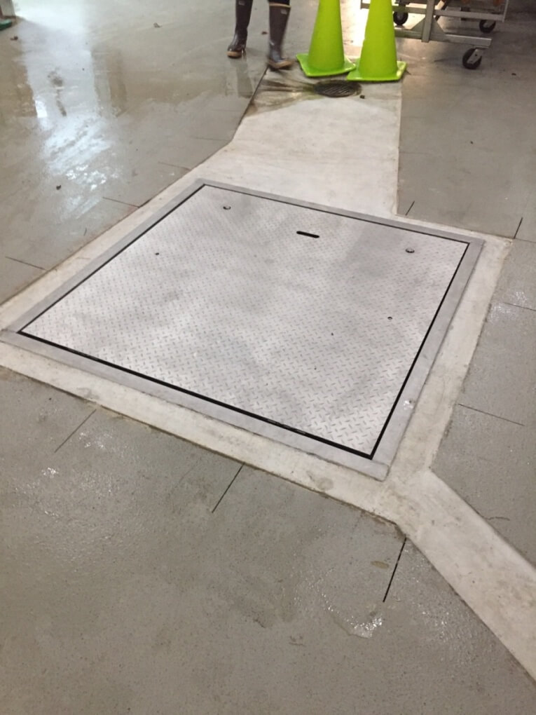 Rice Lake Roughdeck Qc Floor Scales With Pit Foundation